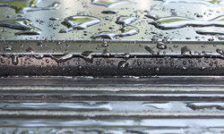 Rear Panel/Tailgate Seal
